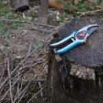 Winter pruning and cleaning up your debris