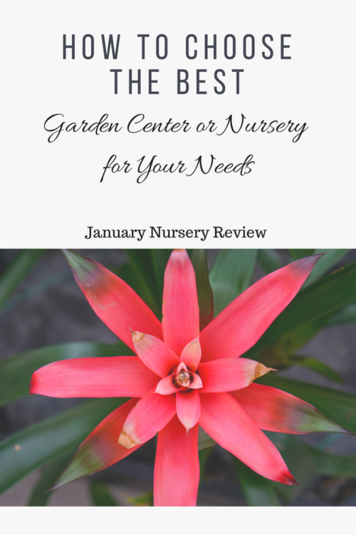 How to choose the best garden center or nursery for your needs.