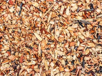 """Wood chip mulch displayed in Spoken Garden's """"How to Mulch in 6 Basic Steps"""" post"""