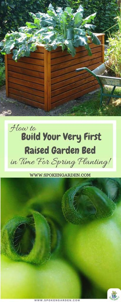 A cedar raised garden bed and homegrown tomatoes with text overlay in Spoken Garden's advertisement