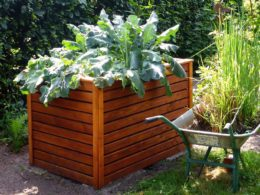 How To Build Your Very First Raised Garden Bed in Time For Spring Planting!