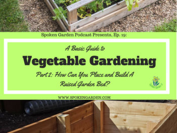 Ep19 Vegetable Gardening Part 2 –  How Can You Place and Build a DIY Raised Garden Bed?