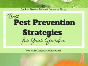 Ep17 Best Pest Prevention Strategies for Your Garden