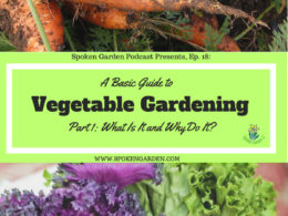 Ep18 Vegetable Gardening: Part 1 – What Is It and Why Do It?