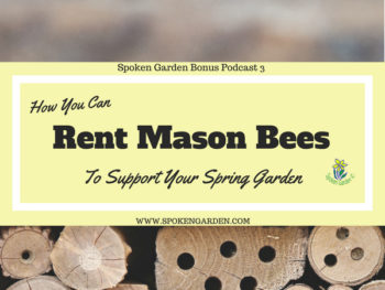 Bonus Ep. 3: Renting Mason Bees For Your Garden