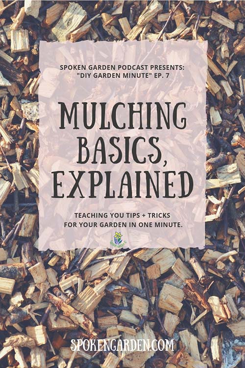 "Wood chips on the ground forming a layer of mulch as advertised on Spoken Garden's ""Mulching Basics, Explained"" podcast."
