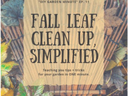 DIY Garden Minute Ep. 11: Fall Leaf Clean Up, Simplified!