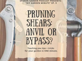 DIY Garden Minute Ep. 9: Anvil vs Bypass Pruning Shears