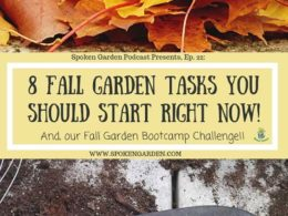 Ep. 22: 8 Fall Garden Tasks and Our Fall Boot Camp Challenge