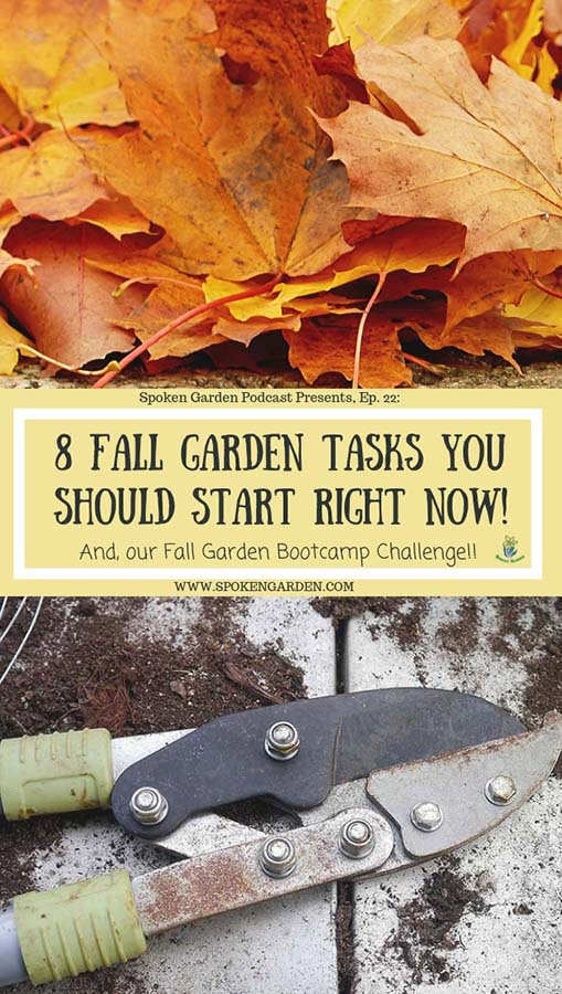 A pile of orange and yellow fall leaves and a pair of anvil pruning shears in Spoken Garden's podcast episode 22 advertisement