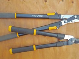 Best Loppers for Your Pruning Needs