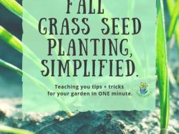 DIY Garden Minute Ep. 21: Fall Grass Seed Planting, Simplified