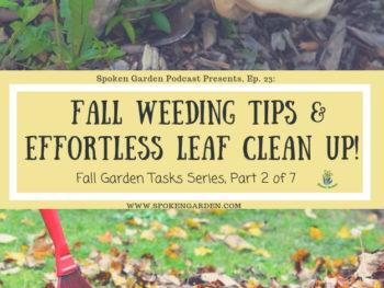 Ep.23: Fall Weeding Tips & Effortless Leaf Clean UP!
