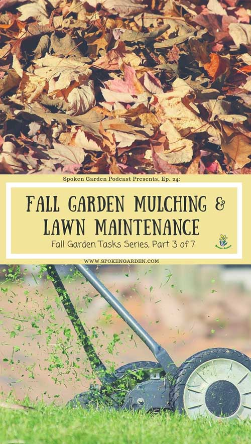 "A pile of fall leaves used for mulching and a hand-powered lawn mower in Spoken Garden's ""Fall Garden Mulching and Lawn Maintenance"" podcast 24 advertisement."