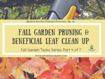 Ep. 25: Fall Garden Pruning and Beneficial Leaf Clean Up