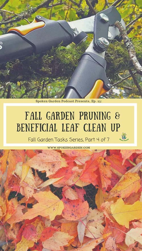 "A pair of loppers cutting a branch and a pile of colorful leaves in Spoken Garden's ""Fall Garden Pruning"" podcast advertisement"