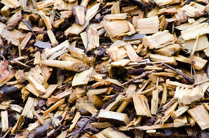 "A pile of wood mulch in a garden bed in Spoken Garden's ""Fall Garden Tasks"" post."