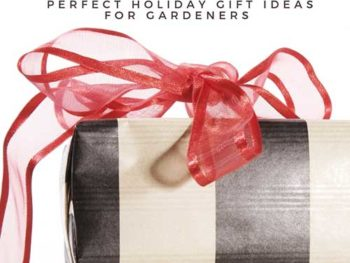 "A black and white striped present with a large, red bow around it in Spoken Garden's ""Best Gardne Tool Sets"" review post advertisement"