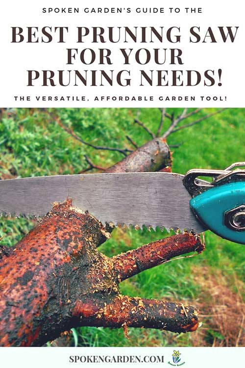 """A hand saw cutting a dead section of a tree in Spoken Garden's """"Best Pruning Saw for Any Gardener."""""""