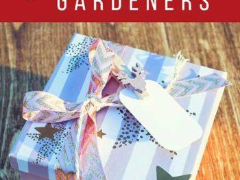 5 Garden Gifts for Beginning Gardeners – DIY Garden Minute Ep. 28