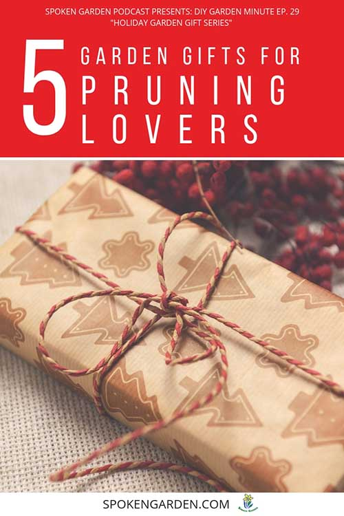 "A long, wrapped present with a red and white bow around it as advertised in Spoken Garden's ""5 Garden Gifts for Pruning Lovers"" podcast."