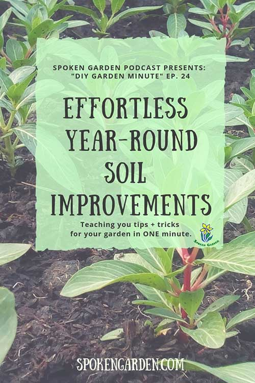 "Several rows of plants are shown in garden soil in Spoken Garden's ""Effortless Year-Round Soil Improvements"" podcast advertisement"