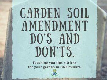 DIY Garden Minute Ep. 25: Garden Soil Amendment Do's and Don'ts