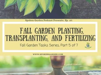 Ep. 26: Fall Garden Planting, Transplanting, and Fertilizing