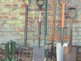 Top 10 Garden Tools You May Not Actually Have (And Never Knew You Needed)