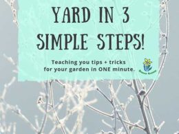 DIY Garden Minute Ep. 33: 3 Simple Steps to Winterize Your Yard!