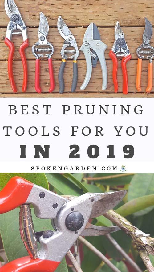 Spoken Garden's Best Pruning Tools for 2019