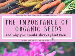 Ep. 29: Organic Seeds & How Advocacy is Changing Locally Grown Vegetables