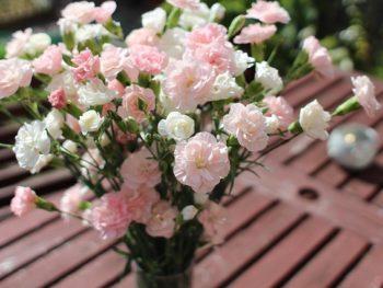 Ep.13: Valentine's Day Garden Gifts