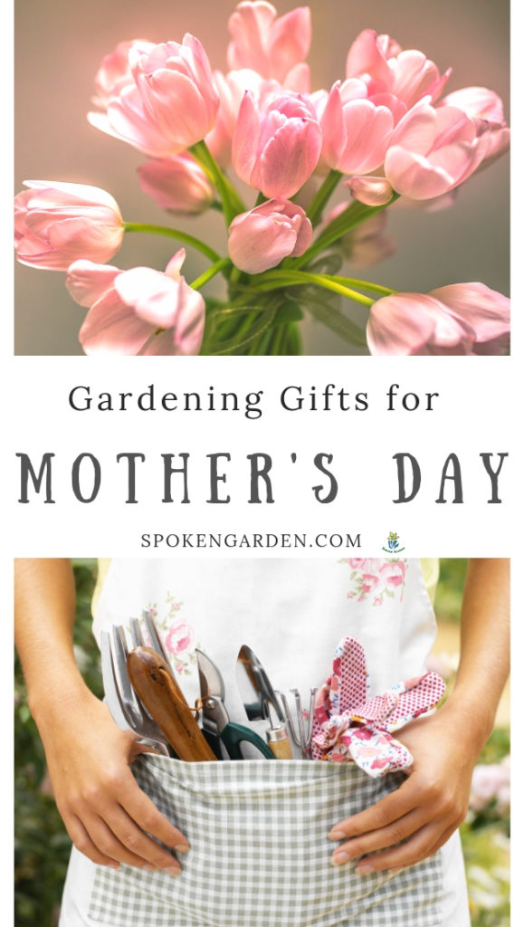 Calla lily bouquet and apron for Mother's day