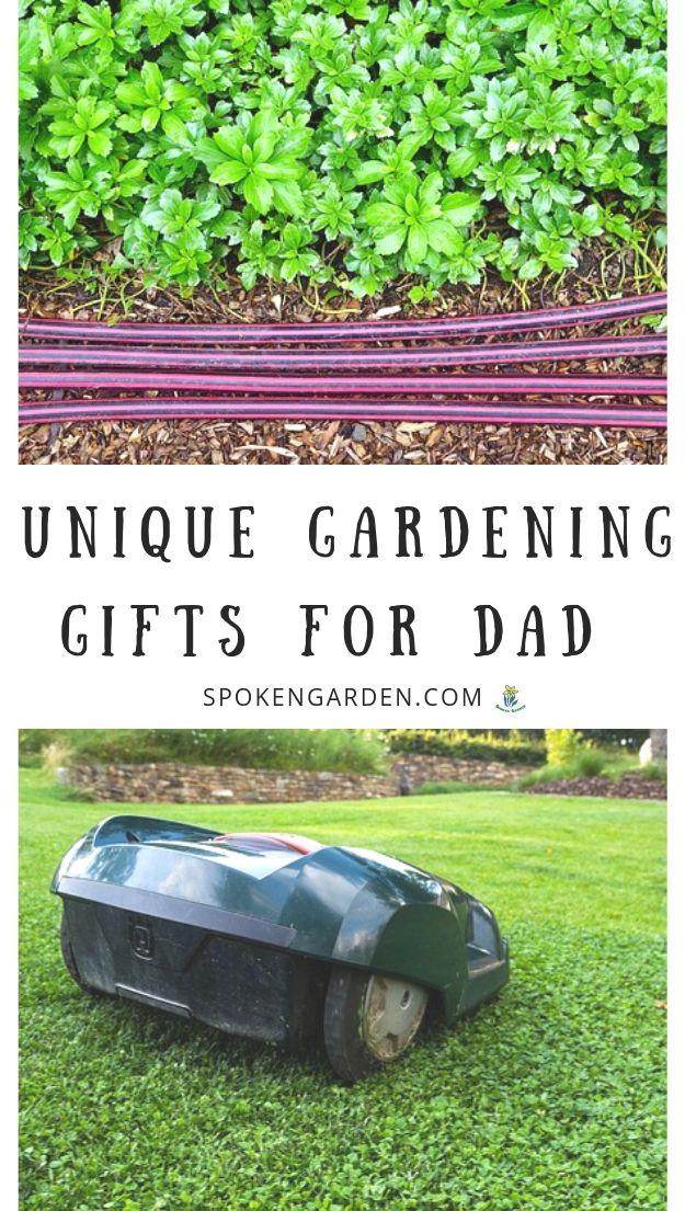 Garden hoses and mower in Spoken Garden's Gardening Gifts For Dad post