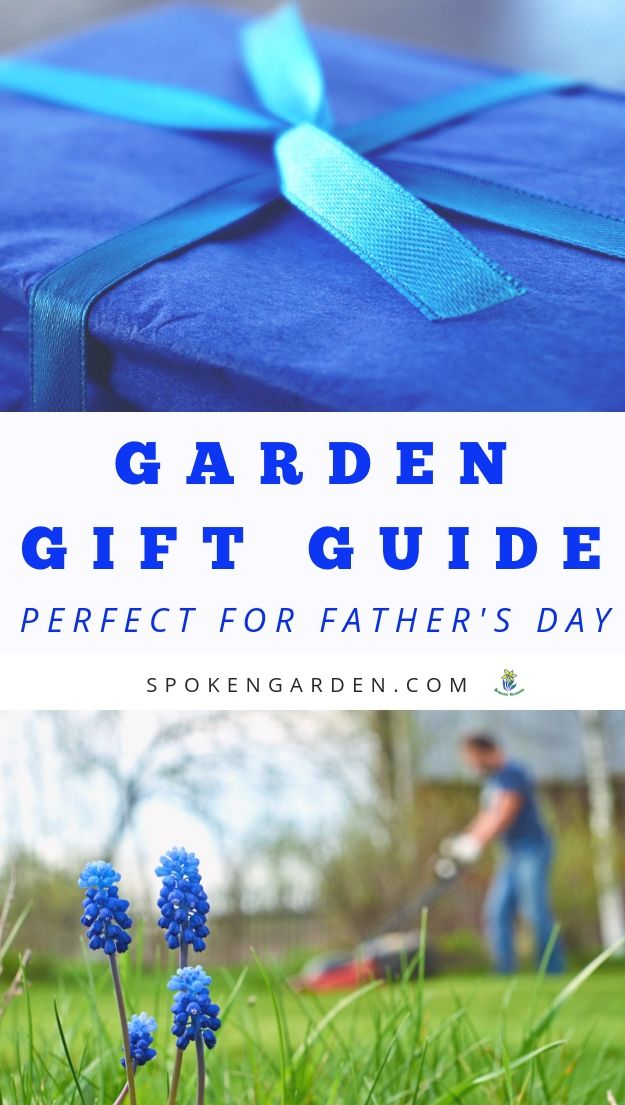 Blue Father's day gift and man mowing in Spoken Garden's podcast advertisement