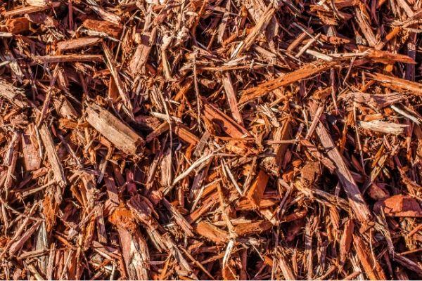 beauty bark mulch alternatives