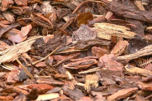 fall mulching tips