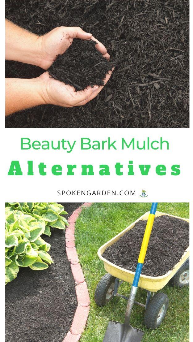 Beauty bark mulch and alternatives