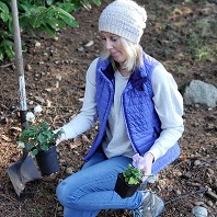 Learning how to care for plants and general garden care in this post