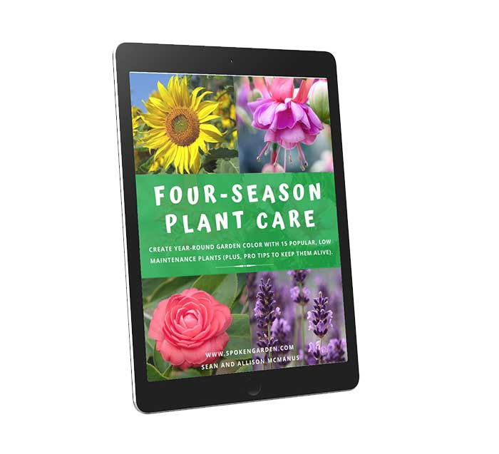 Tablet screen with four-season plant care ebook