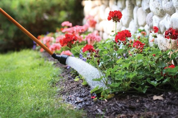 Dramm watering wand watering a bed of flowers