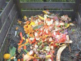 3 Ways to Create a More Sustainable Garden – DIY Garden Minute Ep. 131