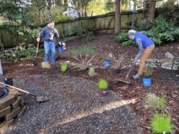 8 Quick Spring Planting Steps – DIY Garden Minute Ep. 140