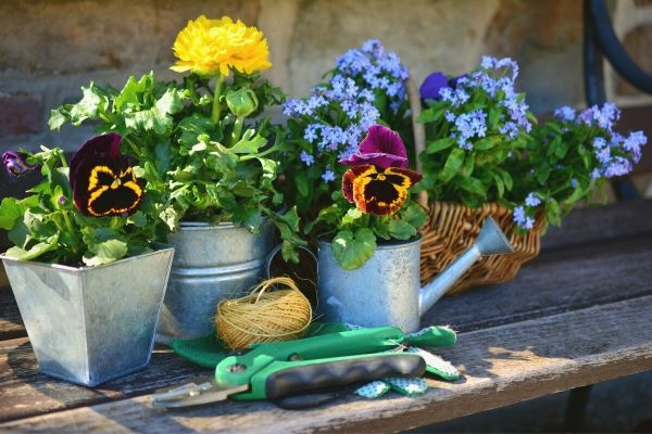 Making garden containers out of household items on a wooden tabletop