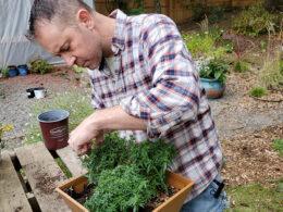 5 Pruning Tips for Beginning Gardeners – DIY Garden Minute Ep.167