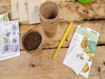 peat pots with seed starting soil in them surrounded by seed packets and a little dibby to help plant them in the peat pots.