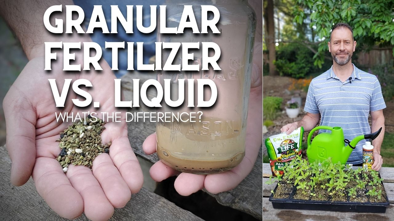 A pair of hands showing granular fertilizer in hand and liquid fertilizer in a jar, along with Sean standing behind a flat of plants with the granular and liquid fertilizer visible with a green watering can.