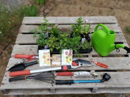 Garden Coaching Questionnaire –